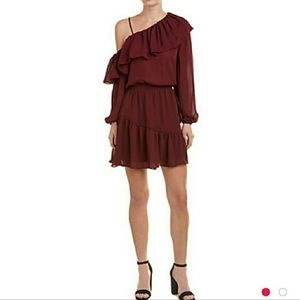NWOT Parker Ruffle One Sleeve Dress